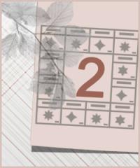 Судьбология Цзы Вэй Доу Шу. Модуль 2. Пакет OPTIMUM