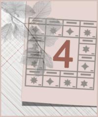 Судьбология Цзы Вэй Доу Шу. Модуль 4. Пакет OPTIMUM